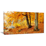 yellow forest of autumn landscape photo canvas print PT8338