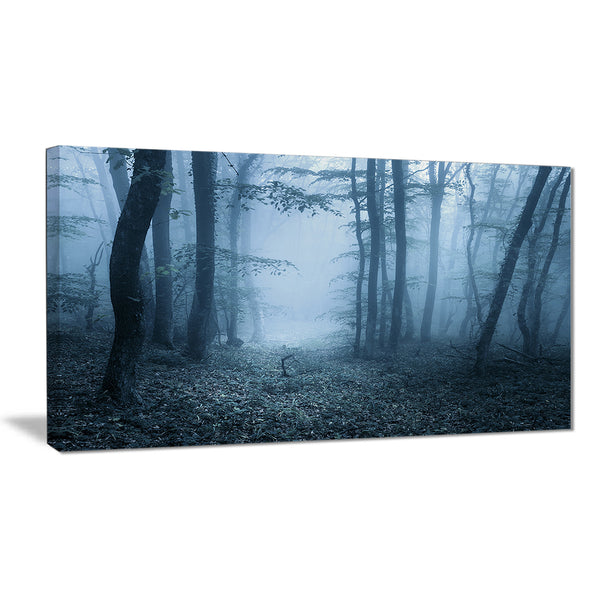 foggy spring forest landscape photography canvas print PT8425