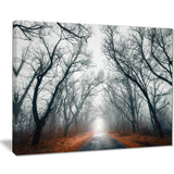 mystic road in forest landscape photo canvas print PT8442