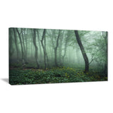 trail through dark foggy forest landscape photo canvas print PT8444