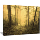 trail through yellow foggy forest landscape photo canvas print PT8445