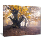 dark tree with yellow leaves landscape photo canvas print PT8450