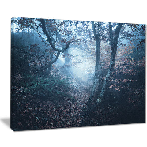 beautiful autumn in forest landscape photo canvas print PT8460