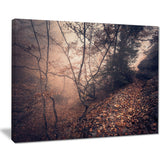 vintage style leaves and trees landscape photo canvas print PT8463