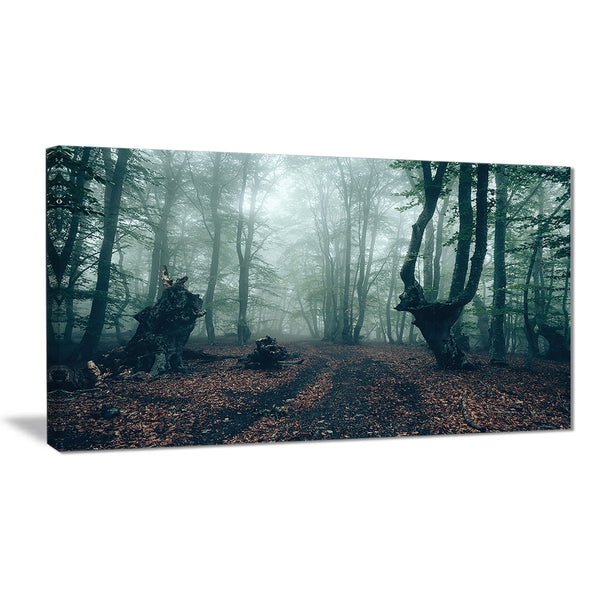dark forest and dark trees landscape photo canvas print PT8465