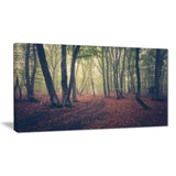 green trees in autumn forest landscape photo canvas print PT8466