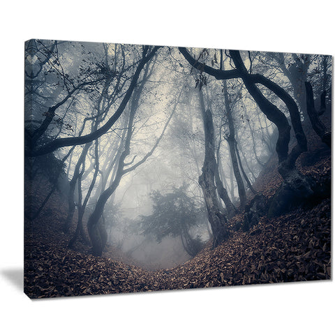 vintage path in autumn forest landscape photo canvas print PT8468