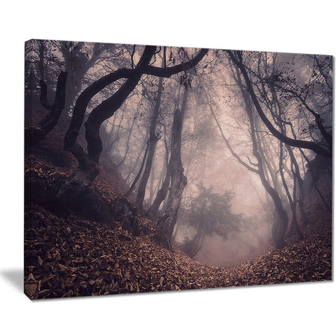 vintage foggy forest trees landscape photo canvas print PT8470