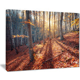 crimean mountains tree shade landscape photo canvas print PT8475