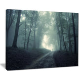 man walking in foggy forest landscape photo canvas print PT8484