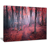 mysterious fairytale red wood landscape photo canvas print PT8485