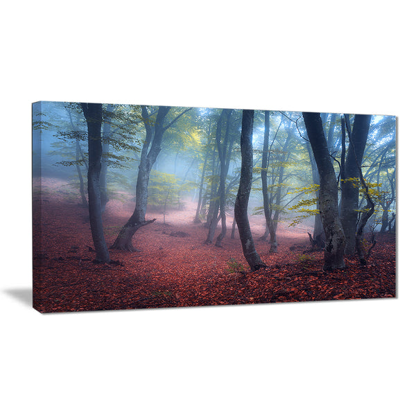 mysterious fairytale green wood landscape photo canvas print PT8487