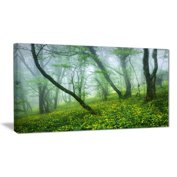 mysterious forest green leaves landscape photo canvas print PT8489