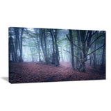 mysterious fairytale wood landscape photo canvas print PT8490