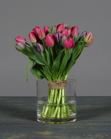 Two-Toned Tulips