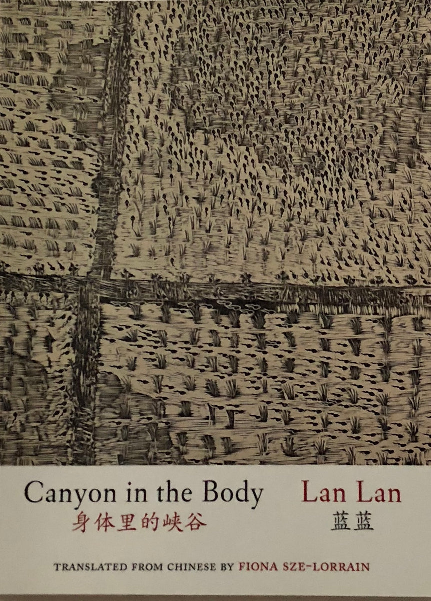 Lan Lan 藍藍 - Canyon in the Body 身体里的峡谷 / Book