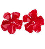 Thalia Earrings - Crimson