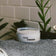 Open jar of Clay Pomade on towel on a sink with plants in the background