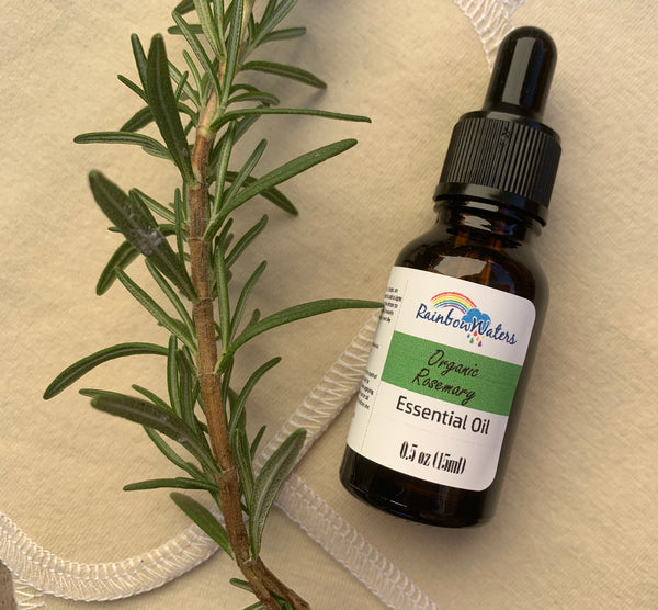 Pure Organic Rosemary Essential Oil, 0.5oz (15ml)