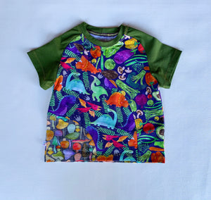 Size 4T, Hidden Garden Crazy Raglan Tee with short sleeves