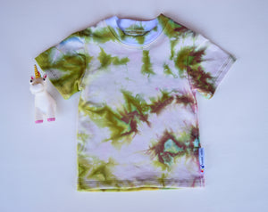 Size 12m, Earthly Elements, LWI Tie Dyed, Standard Tee, short sleeves