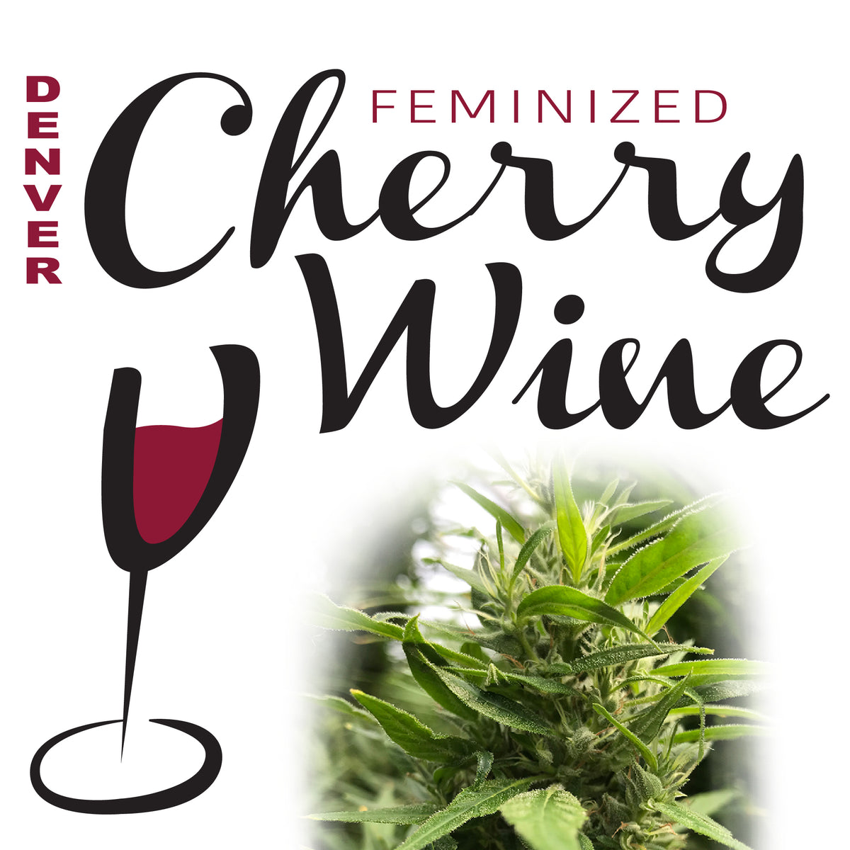 Denver Cherry Wine