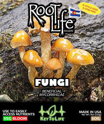 Root Life Fungi - Front Label