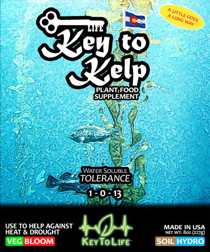 Key to Kelp - Front Label