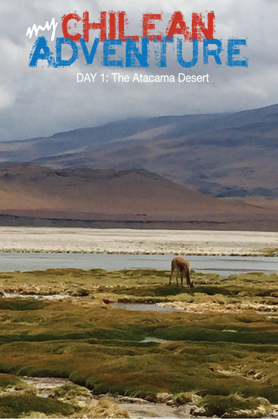 ADVENTURES IN CHILE | THE ATACAMA DESERT
