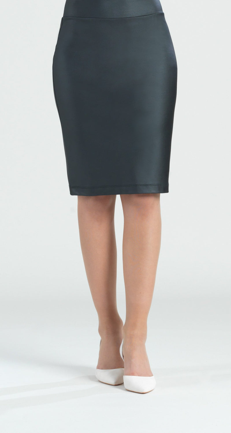 Liquid Leather Pencil Skirt - Clara Sunwoo