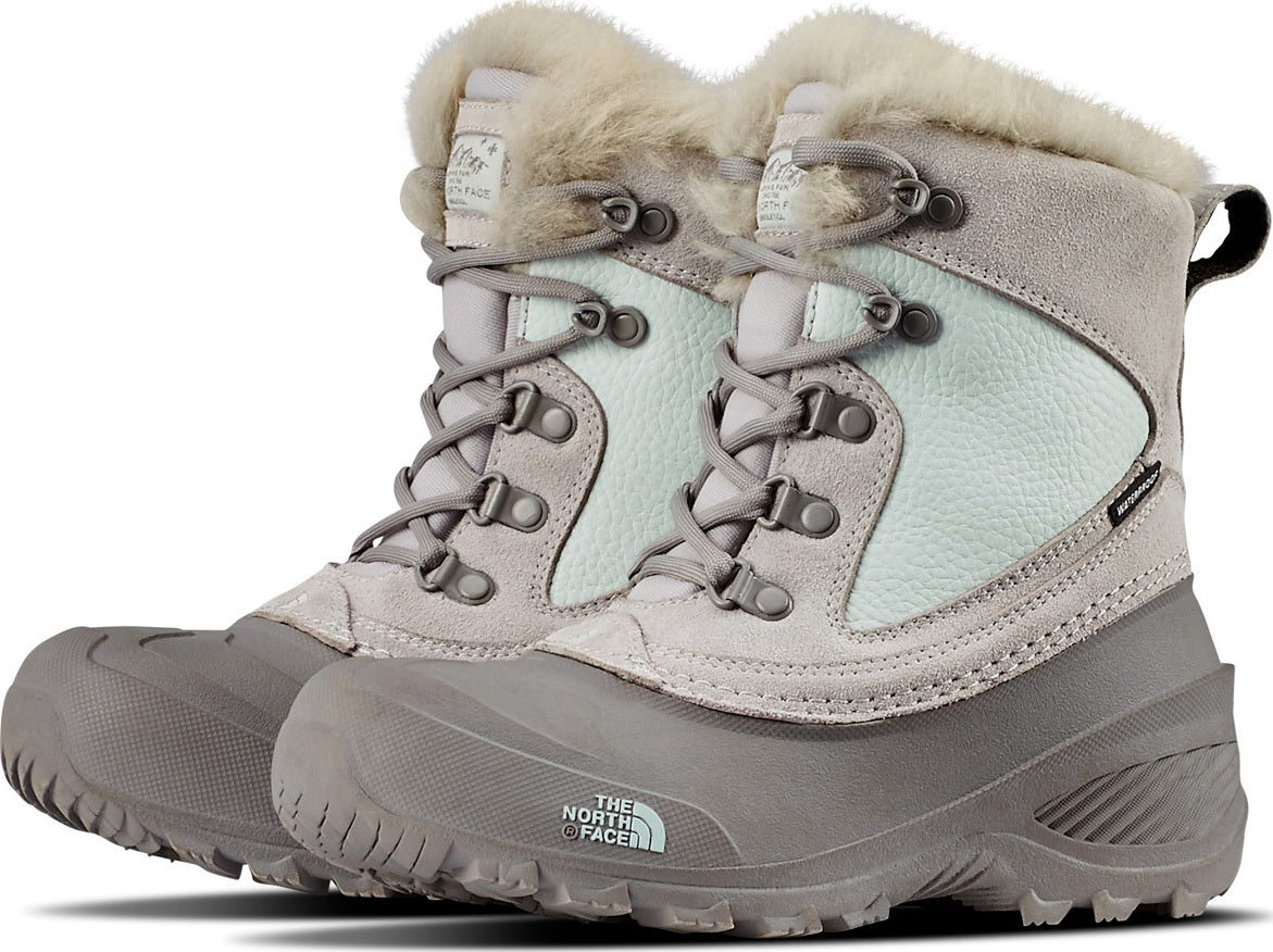 2ab78ac6f3 The North Face Youth Shellista Extreme   Altitude Sports