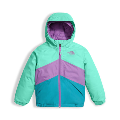 The North Face Brianna Insulated Jacket - Toddler Girl's