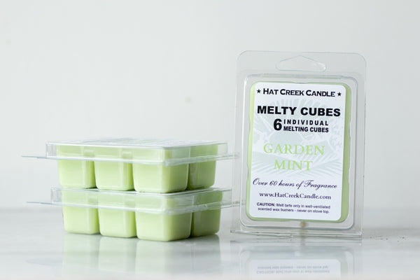 Melty Cube Scented Wax Melts 2pk: Garden Mint