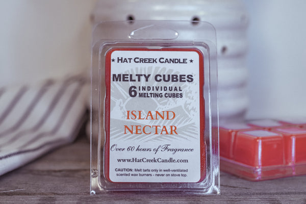 Melty Cube Scented Wax Melts 2pk: Island Nectar