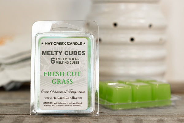 Melty Cube Scented Wax Melts 2pk: Fresh Cut Grass