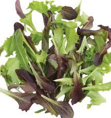 Lettuce: Baby Green Mix