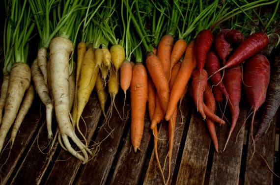 Carrots: Colourful