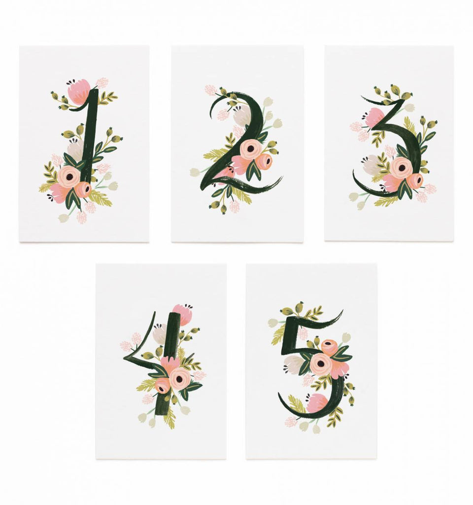 Botanical Table Numbers by Rifle Paper Co