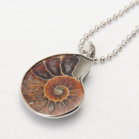 Natural Ammonite Fossil Necklace