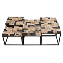 Noir - Plato Coffee Table, Metal W/ Fossil