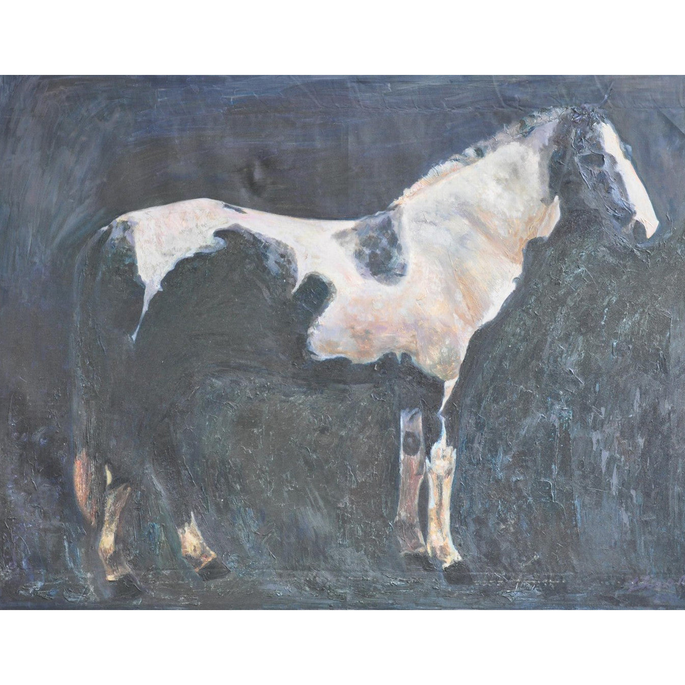 Noir - White & Black Horse