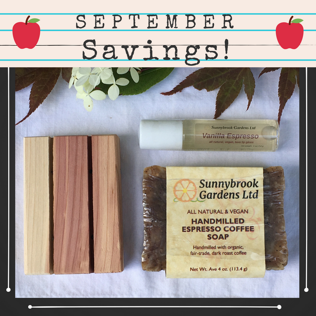 September Savings have arrived in our latest Monthly Promotion Gift Box!