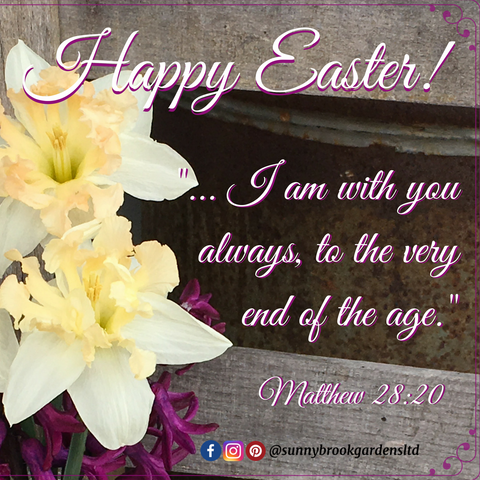 "Happy Easter! ""I am with you always, to the very end of the age."" Matthew 28:20"