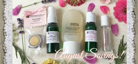 August Monthly Promotion Box has Savings on Fun Travel Essentials!