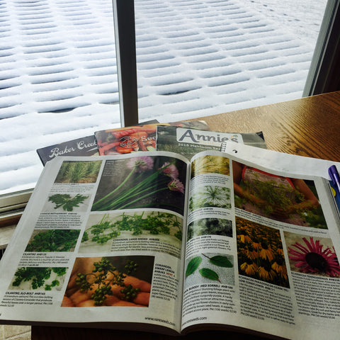 Garden plans for spring with so many seeds to choose from!