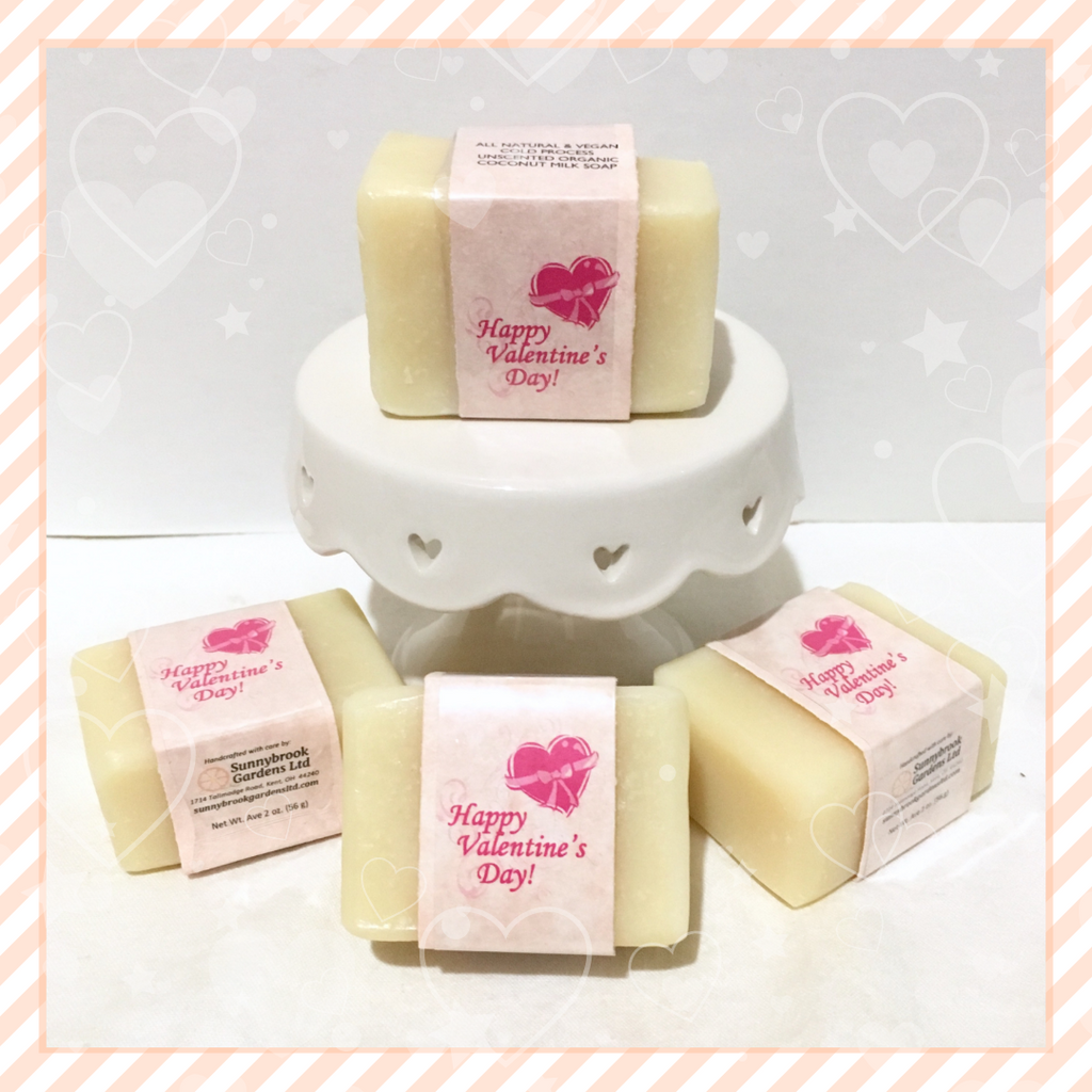 Valentines Day Cold Process Unscented Organic Coconut Milk Guest Soaps