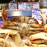 Dungeness Crab - Whole Cooked