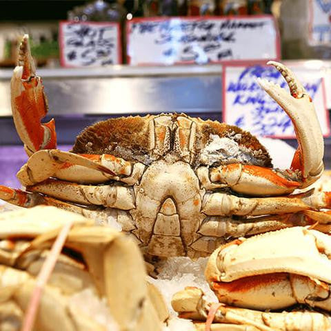 Dungeness Crab - 30 Pound Case