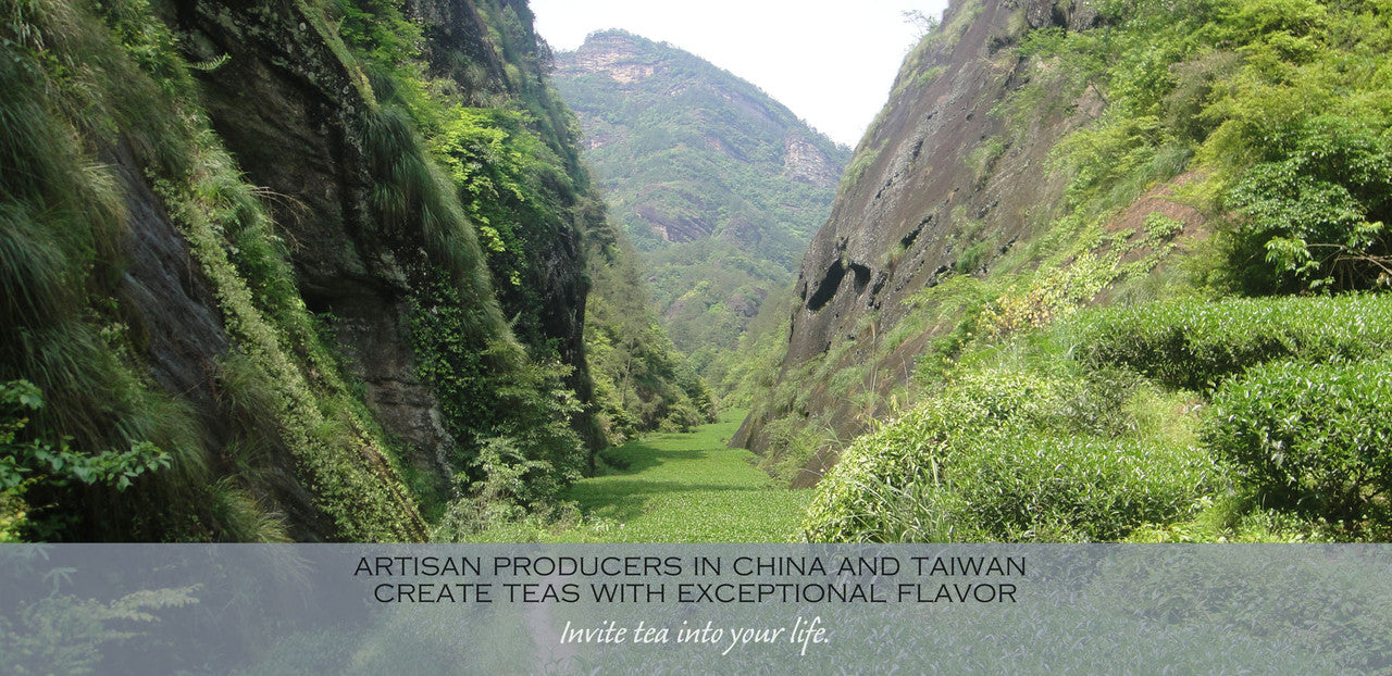 artisan producers in china and taiwan create teas with exceptional flavor