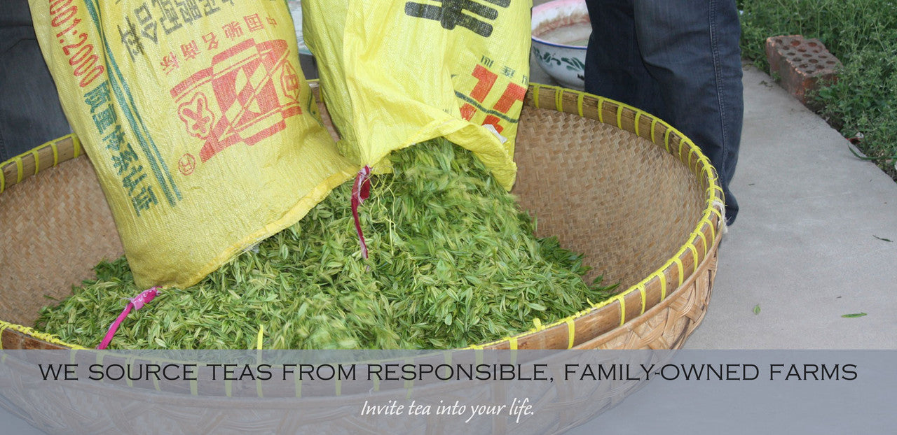 we source tea from responsible, family-owned farms